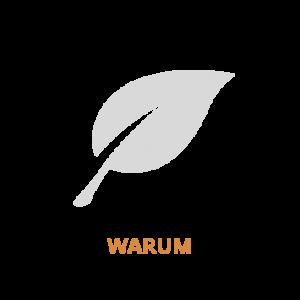 REcover icoontjes website oranje Duits-01
